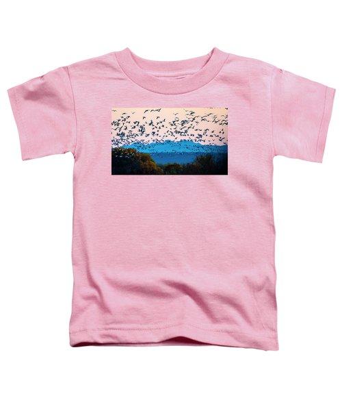 Herd Of Snow Geese In Flight, Soccoro Toddler T-Shirt