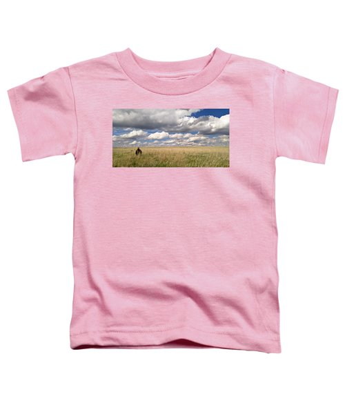 It's Amazing Here Toddler T-Shirt