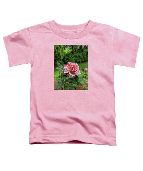 Neil Diamond Rose Toddler T-Shirt