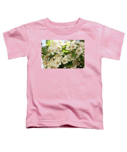 Neston.  Hawthorn Blossom. Toddler T-Shirt