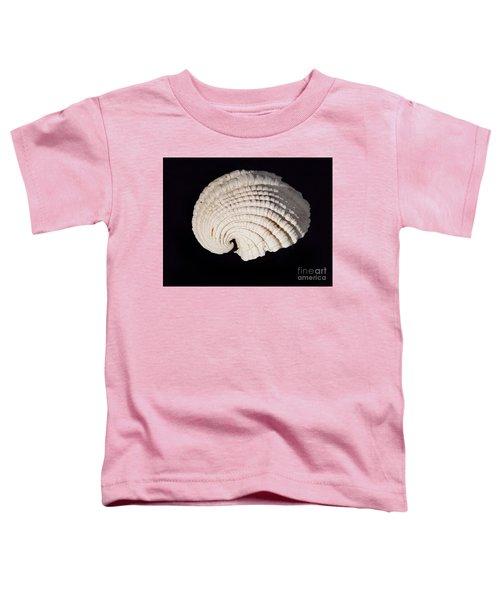 Painted Shell No. 3 Toddler T-Shirt