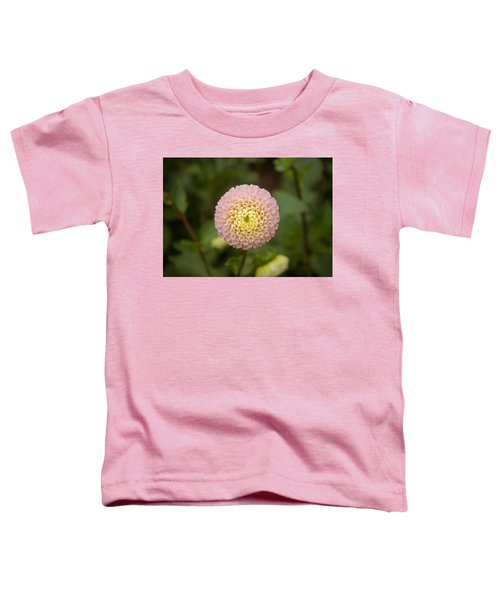 Petite Pink Toddler T-Shirt