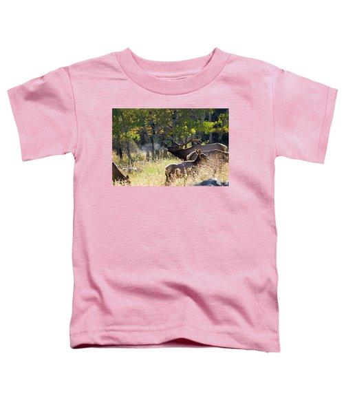Rocky Mountain Bull Elk Bugeling Toddler T-Shirt