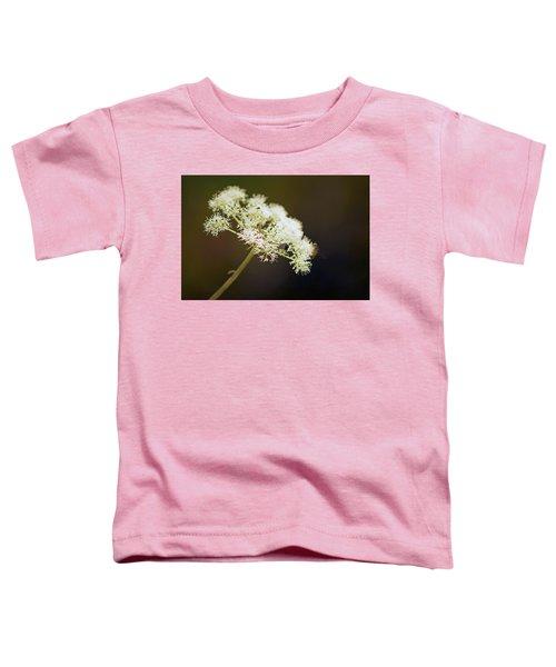 Scotland. Loch Rannoch. White Flowerhead. Toddler T-Shirt