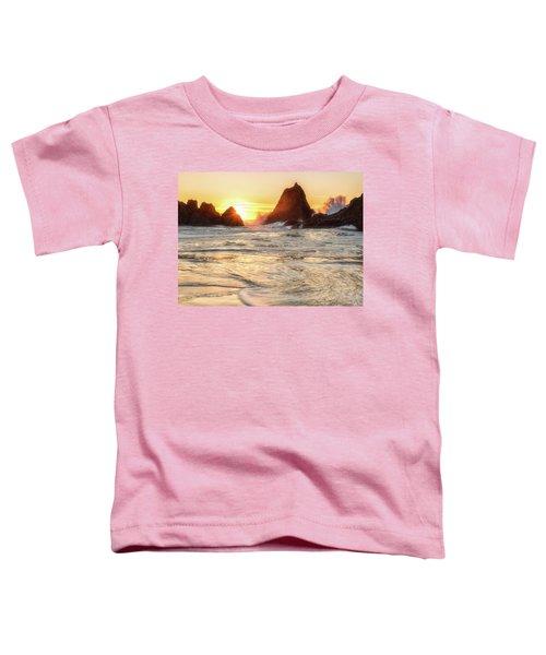 Seal Rock  Toddler T-Shirt
