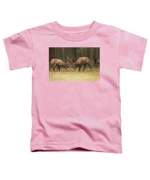 Sparring Toddler T-Shirt