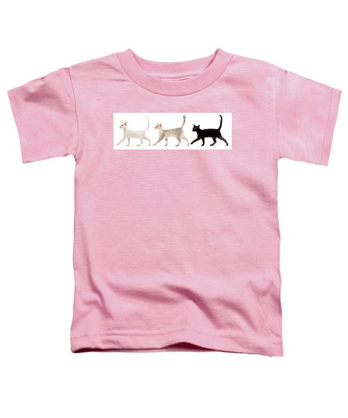 The Kits Parade - Three Toddler T-Shirt