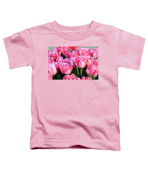 The Sweet Hello Toddler T-Shirt
