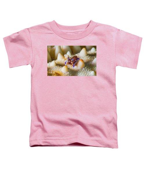Tiny Big World Toddler T-Shirt