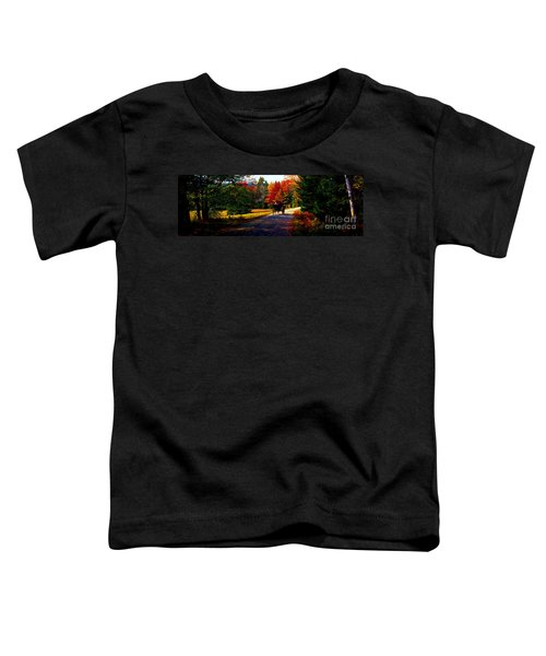 Acadia National Park Carriage Trail Fall  Toddler T-Shirt