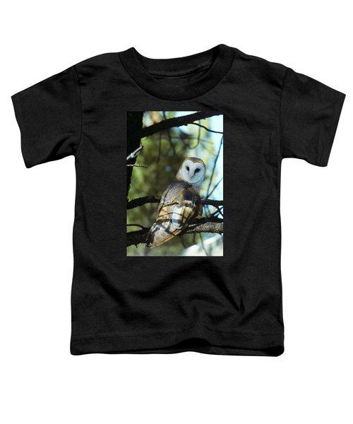 Barn Owl Tyto Alba Worldwide Range High Toddler T-Shirt