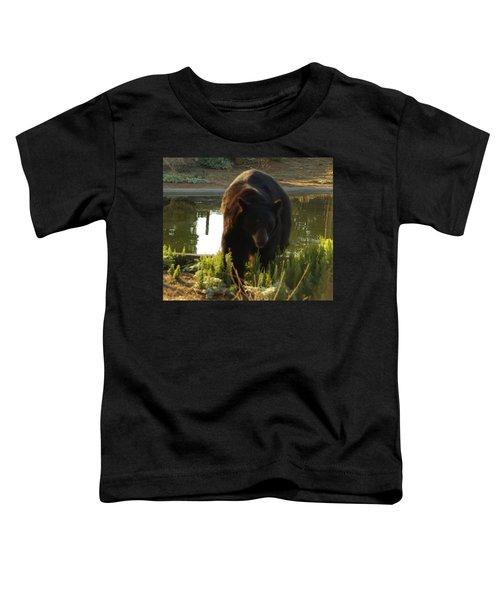 Bear 1 Toddler T-Shirt