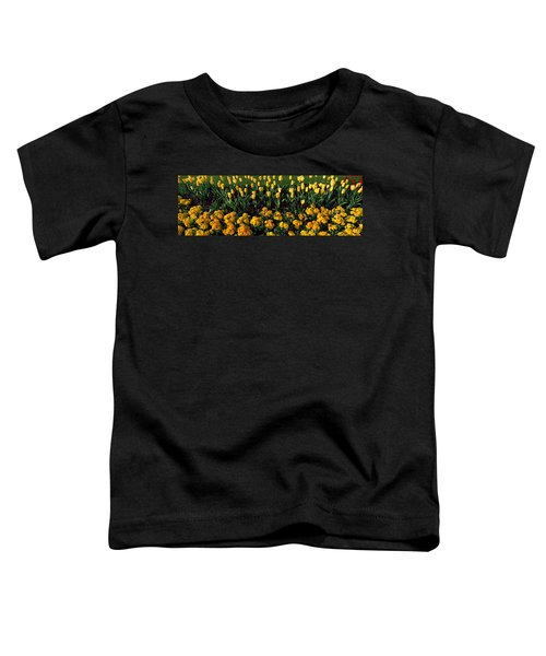 Flowers In Hyde Park, City Toddler T-Shirt