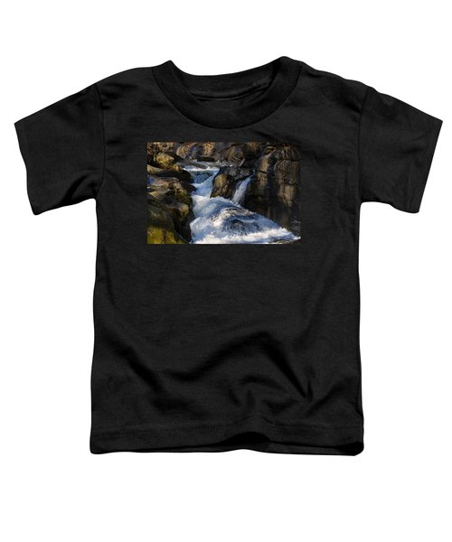 unnamed NC waterfall Toddler T-Shirt