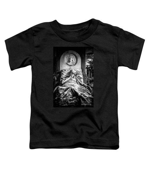 Cemetery Of Mantova Toddler T-Shirt