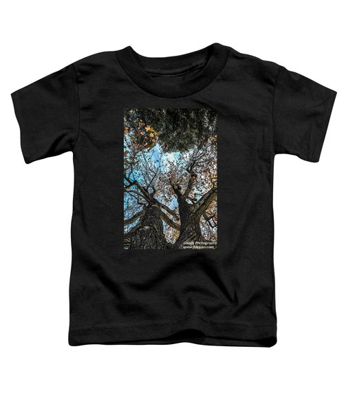 1st Tree Toddler T-Shirt