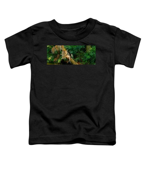 Anhinga Anhinga Anhinga On A Tree Toddler T-Shirt by Panoramic Images