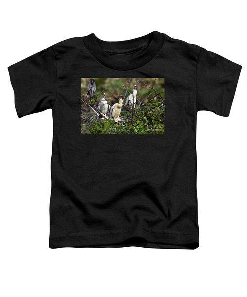 Baby Anhinga Toddler T-Shirt