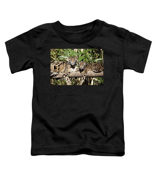 Clouded Leopards Toddler T-Shirt