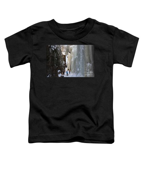 The Flume Gorge Nh Toddler T-Shirt