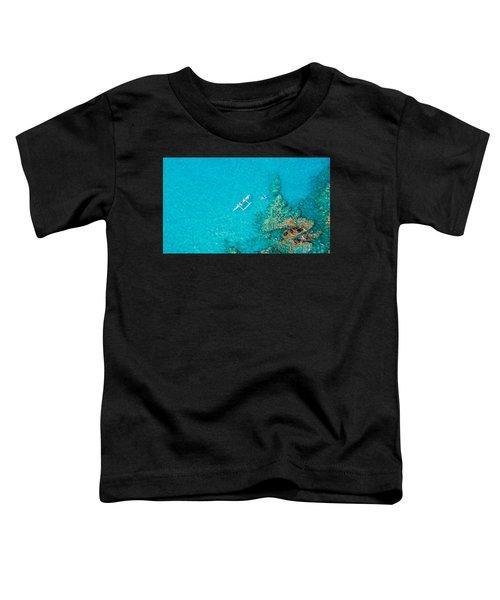 A Bird's Eye View Toddler T-Shirt