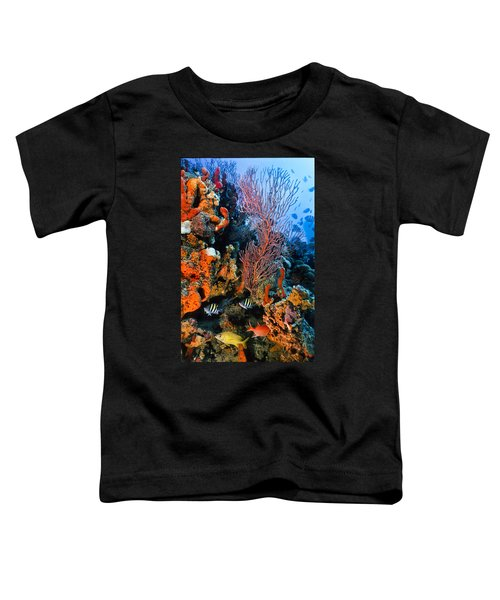 A Colorful Ledge Toddler T-Shirt