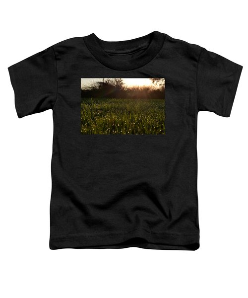 A Field Of Jewels Toddler T-Shirt