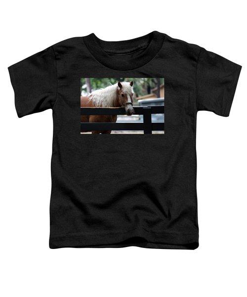 A Hilton Head Island Horse Toddler T-Shirt