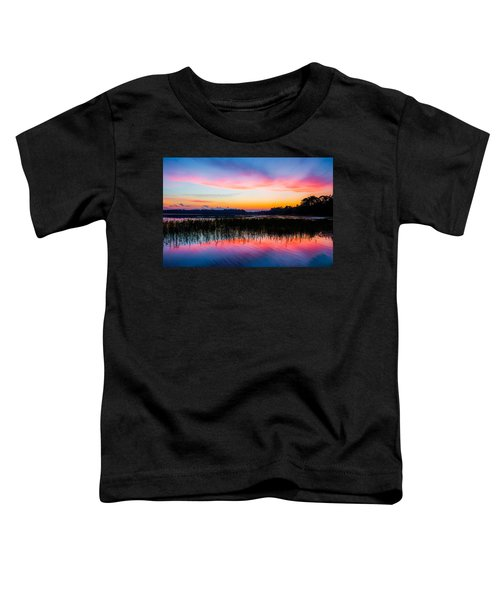 A Palette Of Colors Toddler T-Shirt