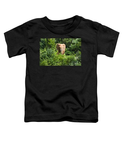 African Elephant Eating In The Shrubs Toddler T-Shirt