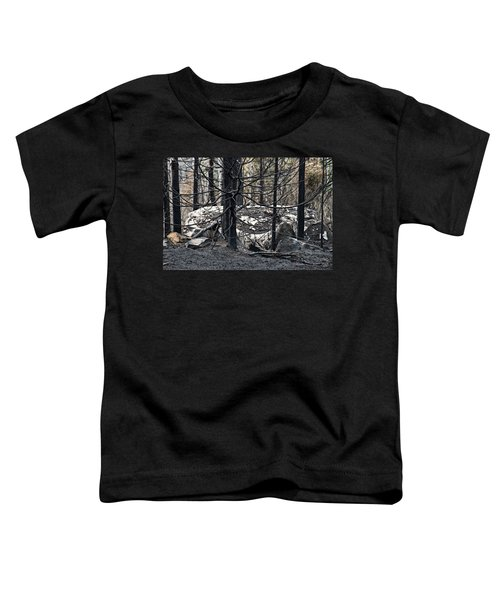 Toddler T-Shirt featuring the photograph Aftermath by Doug Gibbons