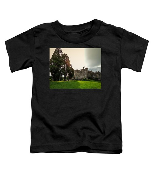 Toddler T-Shirt featuring the photograph Afternoon Sun Over Markree Castle by James Truett
