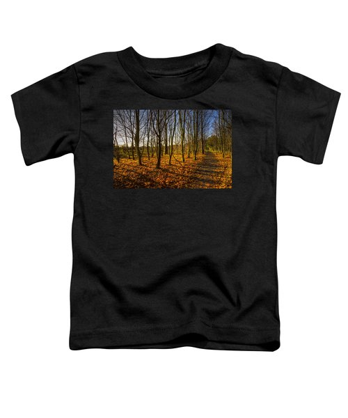 An Autumn Walk Toddler T-Shirt
