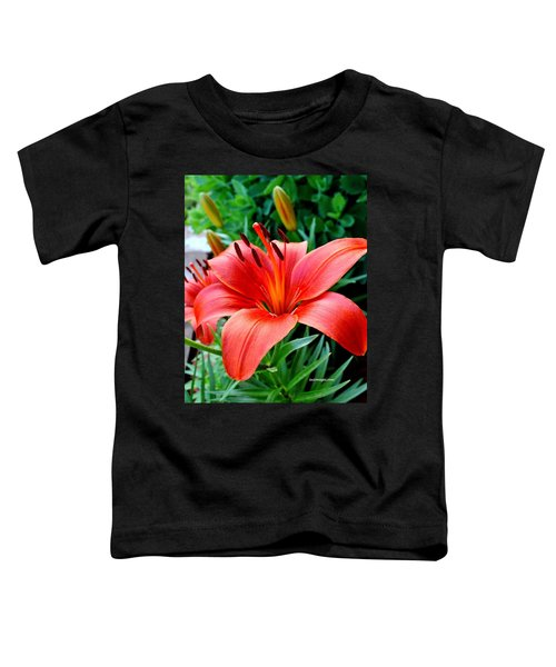 Andrea's Lily Toddler T-Shirt