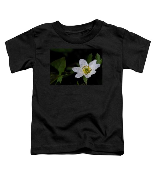 Anemone Nemorosa  By Leif Sohlman Toddler T-Shirt