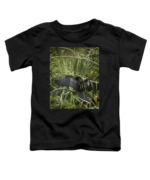 Anhinga Papa Toddler T-Shirt by Phill Doherty