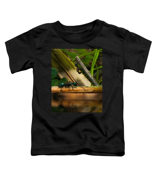 Ants Adventure 2 Toddler T-Shirt