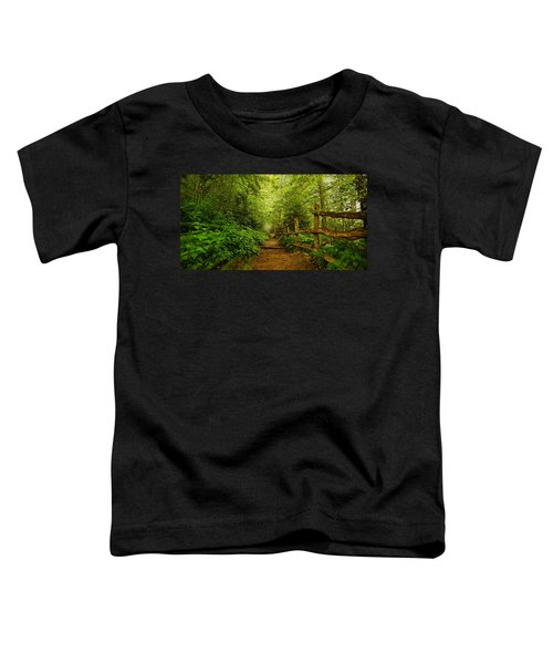 Appalachian Trail At Newfound Gap Toddler T-Shirt