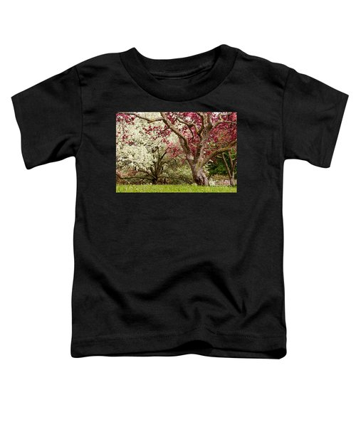 Apple Blossom Colors Toddler T-Shirt by Joe Mamer