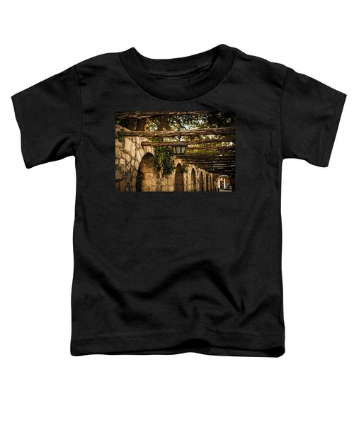 Arches At The Alamo Toddler T-Shirt