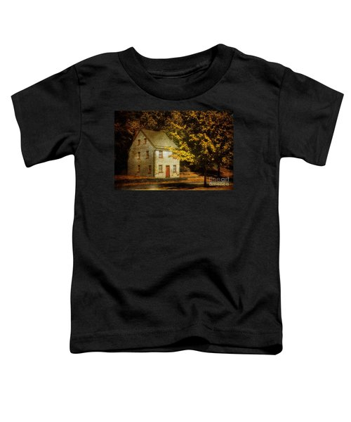 As The World Passes By Toddler T-Shirt