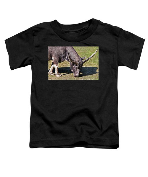 Asian Water Buffalo  Toddler T-Shirt by Miroslava Jurcik