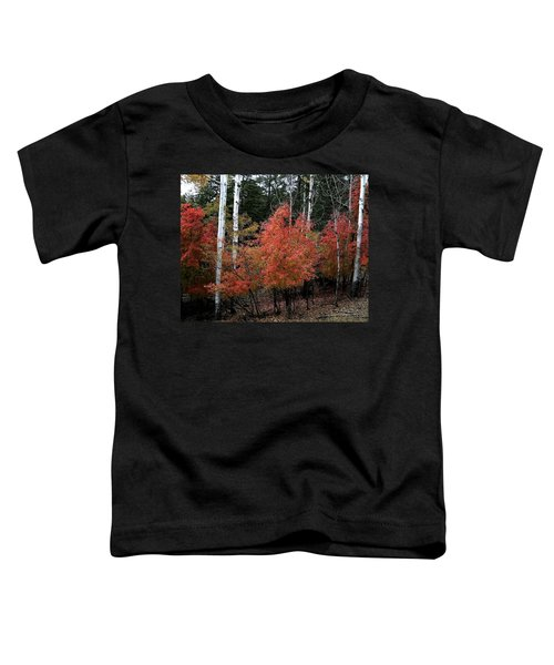Aspen Glory Toddler T-Shirt