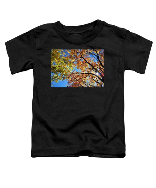 Autumn Afternoon Toddler T-Shirt