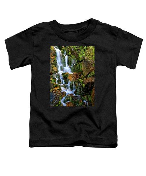 Autumn Along Summit Creek Toddler T-Shirt