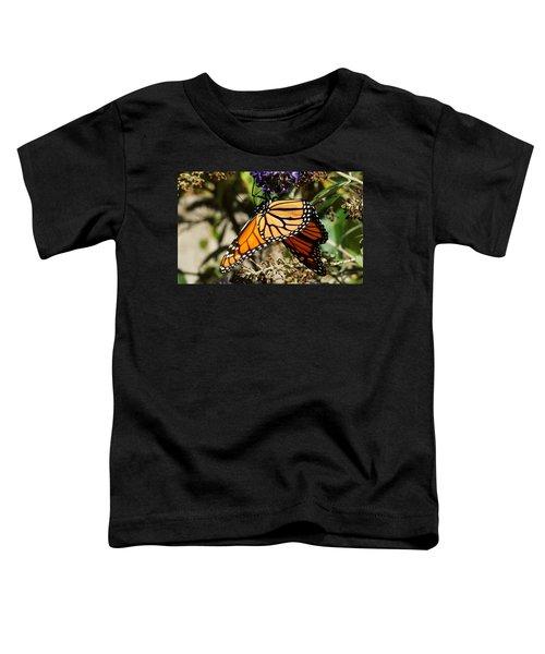 Autumn Butterfly Toddler T-Shirt