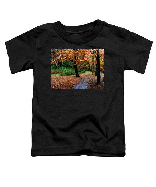 Autumn Entrance To Muckross House Killarney Toddler T-Shirt
