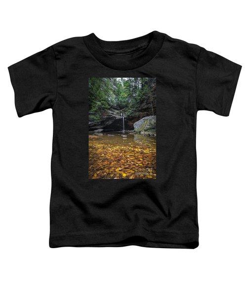 Autumn Falls Toddler T-Shirt by James Dean