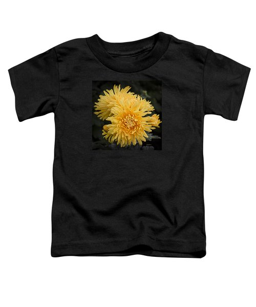 Autumn Mums Toddler T-Shirt