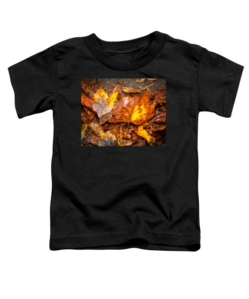 Autumn Pile Toddler T-Shirt